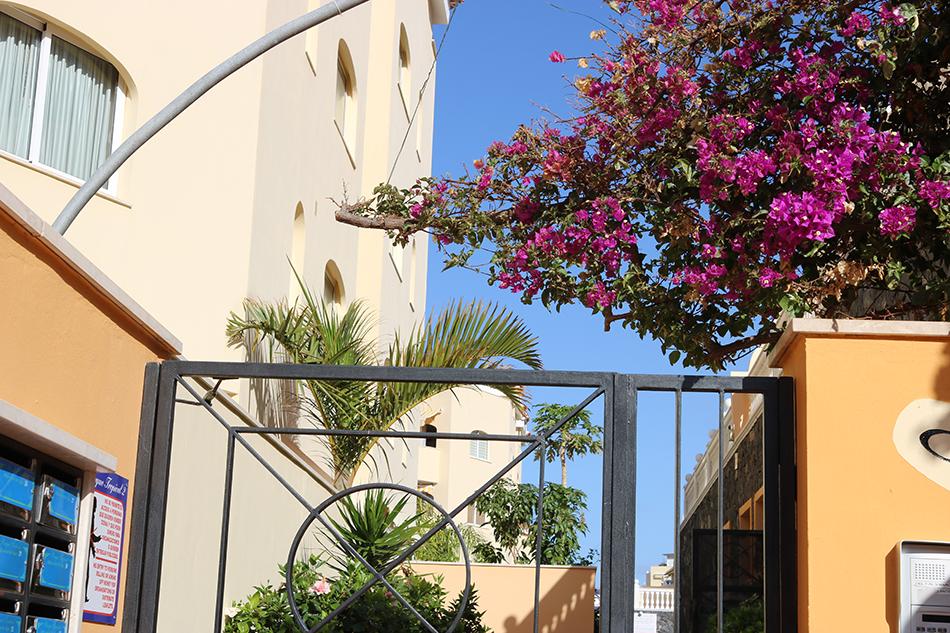 Таунхаус в Los Cristianos в Parque Tropical