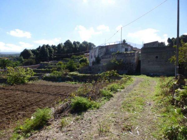 Сельскохозяйственный участок с домом в Icod de Los Vinos